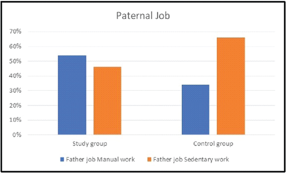 Figure 6 Paternal job in the studied group.